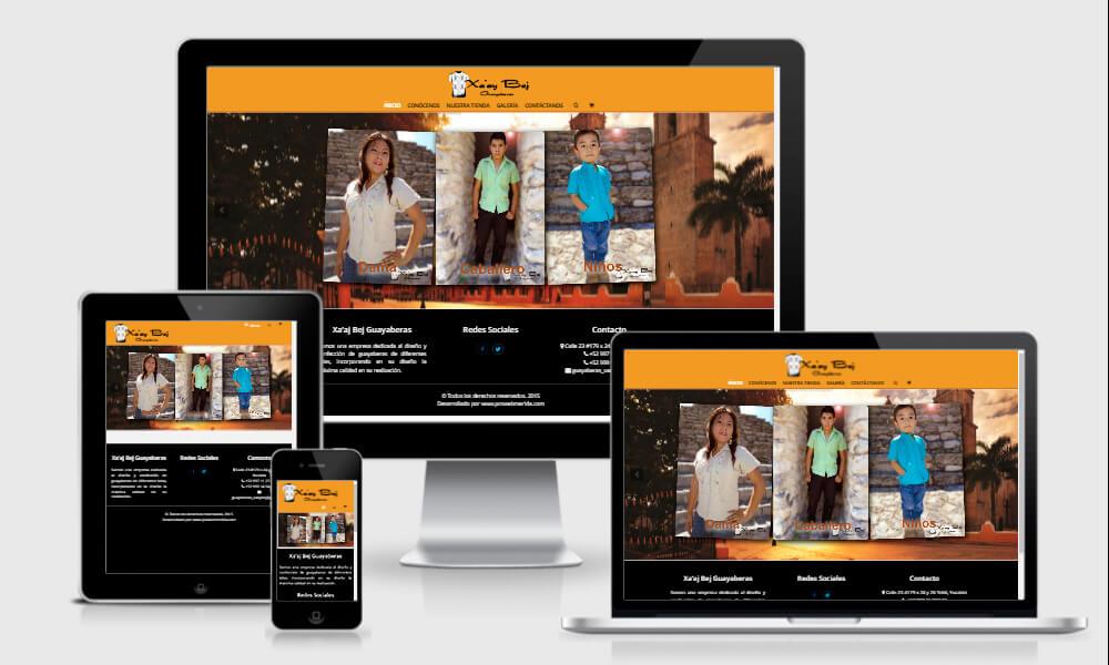desarrollo web - diseño de paginas web